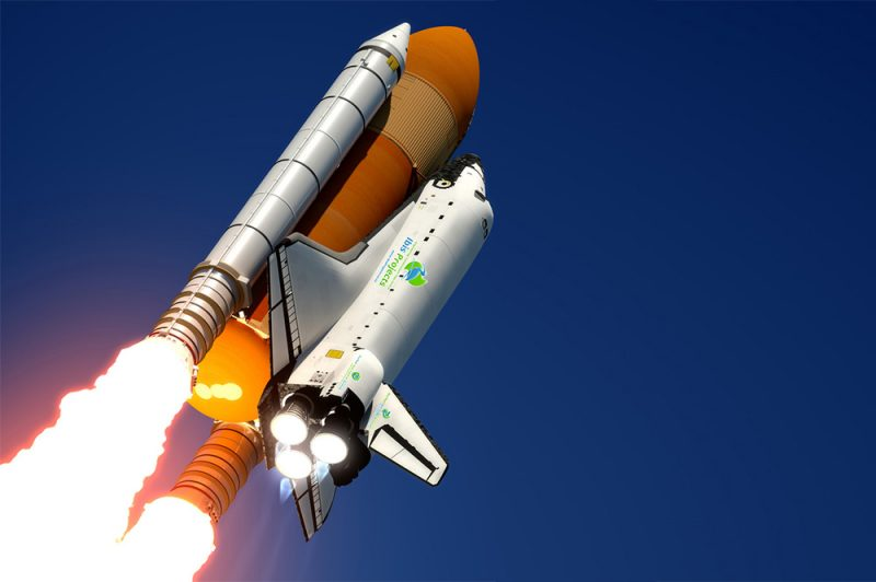 Ibis Projects/ Durban Pest Control Services   News/ Blog - Durban, we have lift-off!